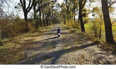 The road in the yellow autumn forest with alley and boy ride...