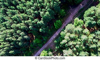 the road is surrounded by green trees on a clear day, view from the top