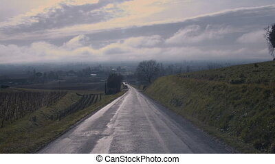 The road that leads to the Saint-Emilion winery in the Libourne region in France with green field on sides