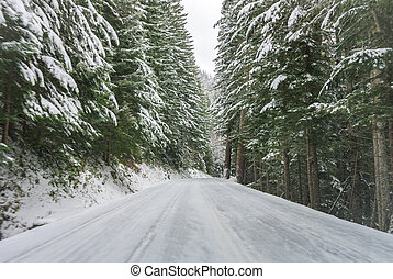 The Road To Paradise in Winter