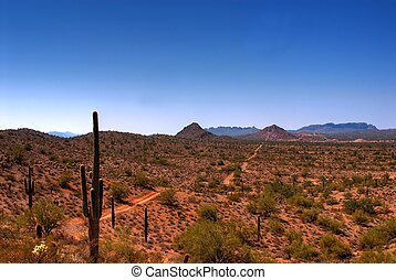 The road to the Mine - Desert road in the Arizona mountains...