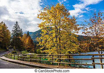 The road with wooden handrails - The road around the lake...