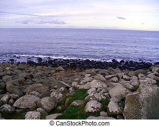 Rocky Beach at Craster, Northumberl - The Rocky Beach at...