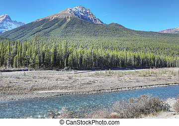 Rocky Mountains with Athabasca River in foreground - The...