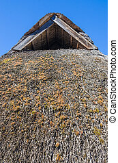 The roof covered with straw, close-up