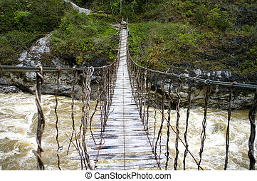 The Rope bridge in New Guinea