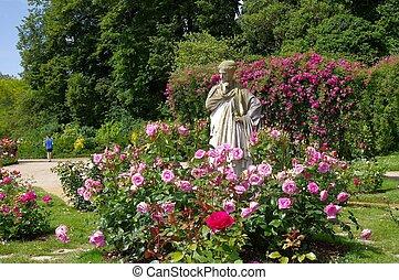 The rose garden - Garden of Thabor, city of Rennes.