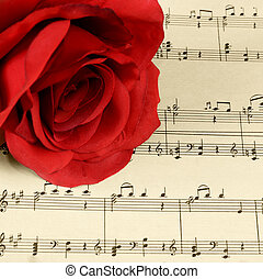 The rose on notebooks with notes