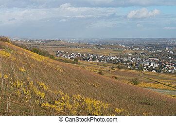 Rudesheim am rhein - The Rudesheim am rhein germany wine...
