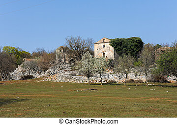 The ruin of an old stone house on the island Cres (Croatia) ...
