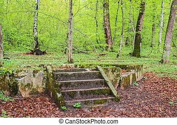 the ruins of a gazebo in the forest