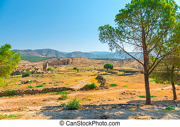 the ruins of the old town on a picturesque hill