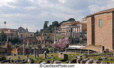 The ruins of the Roman Forum. Zoom. Rome, Italy