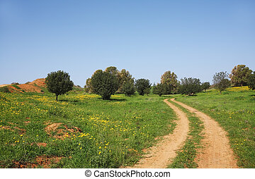 The rural dirt road - Spring in Israel. March at noon, the ...