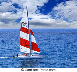 The sailing boat floats at ocean