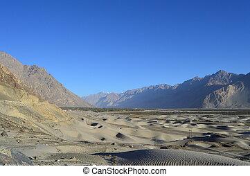 The Sand Dunes of Ladakh