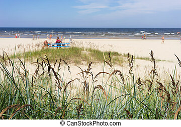 The sandy beach of the Baltic Sea on a summer day season