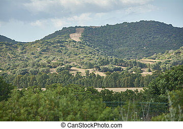 The Sardinian hill surrounded by greenery.