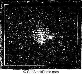 The Saturnian nebula of Aquarius. Image of a world in training, vintage engraving.