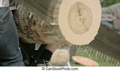 The sawing of a big log from a competition