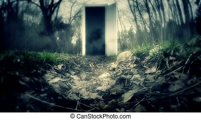 The scary door in the Woods.