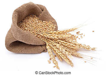The scattered bag with wheat of a grain