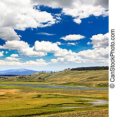 The scenery along the Yellowstone River in Yellowstone National Park