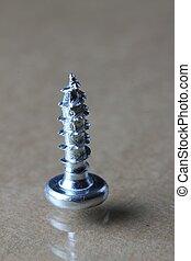 the screw