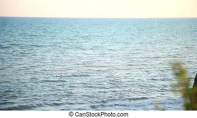 The seashore at sunset