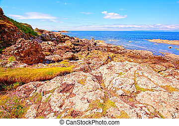 The seashore in Ayrshire, Scotland