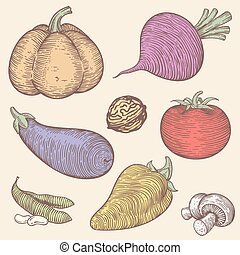 the set of vegetables