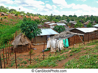 The settlement Gorongosa. Mozambique, Africa. African nature...