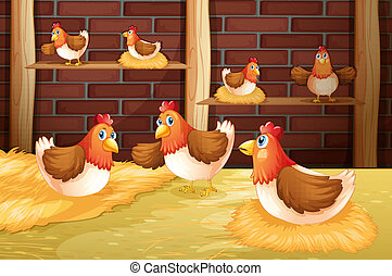 The seven hens - Illustration of the seven hens