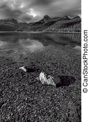 The shallow Redfish Lake. - A B&W of Redfish Lake and the...
