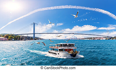 The ship is sailing on the Bosphorus with many seagulls around it, Istanbul