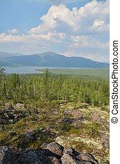 The shore of a mountain lake on Putorana Plateau.