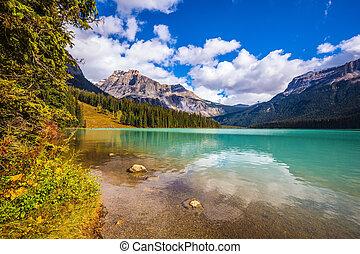 The shore of mountain lake