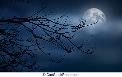 The silhouette of a spooky bare branch halloween tree against a winter blue night sky with a glowing full moon behind the clouds