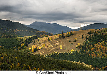 The slopes of the Carpathian mountains