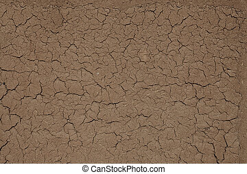 The soil surface is dry and cracked
