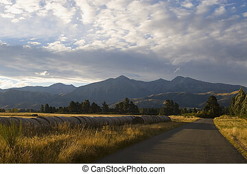 A road, bathed in golden evening sunlight, leads upto the Southern Alps on New Zealand's South Island
