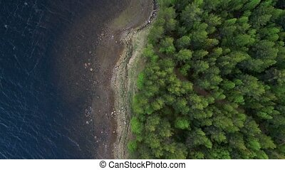 The span of the drone along the coast of the sea bay. Forest...