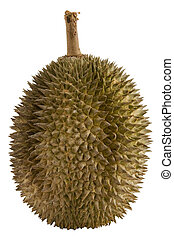 Durian - The spiky fruit called the Durian otherwise known...