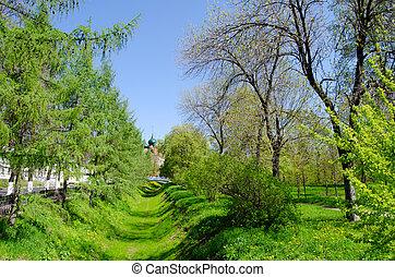The spring landscape
