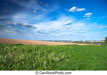 spring landscape with the city and a field