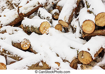 Wood pieces, tree chops stored outdoors for fireplace or mantel, texture or background.