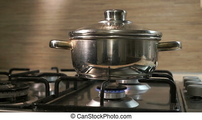 The stainless steel pot on the cooking stove. The food is prepared.