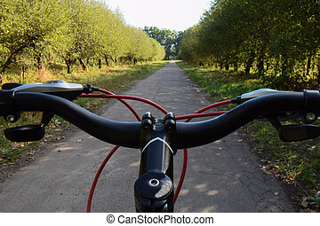 The steering wheel of a bicycle riding on an asphalt road against the backdrop of an orchard. Photographed only the handlebars, not the whole bike