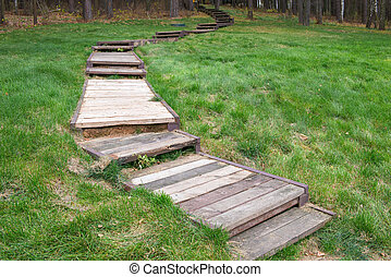 The steps on the lawn go up to the forest
