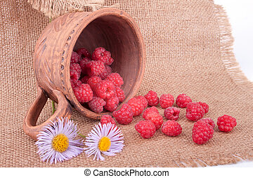 The still life with raspberries
